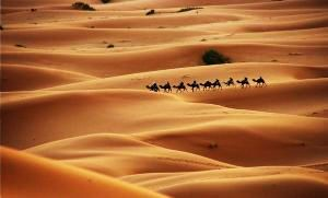 10 Most Spectacular Deserts Across The World